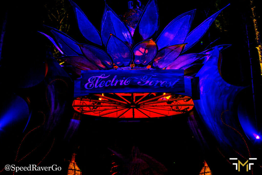 moonflower Electric Forest