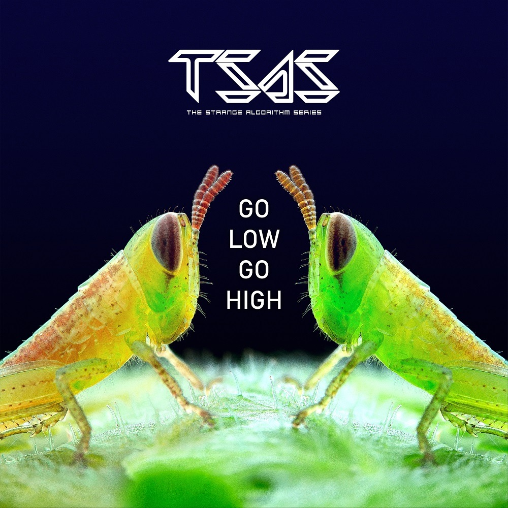 'Go Low Go Hard' is out now!